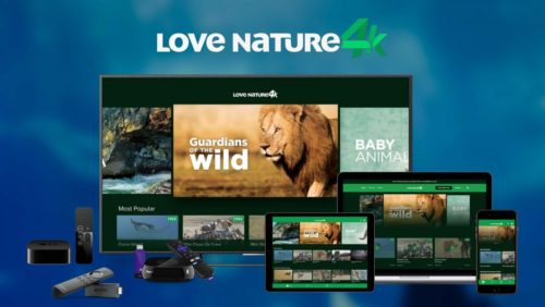 Love Nature Screen