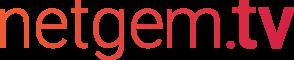 Netgem logo