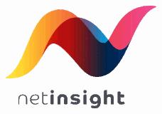 Net Insight logo